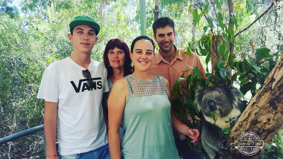 Family meets koala
