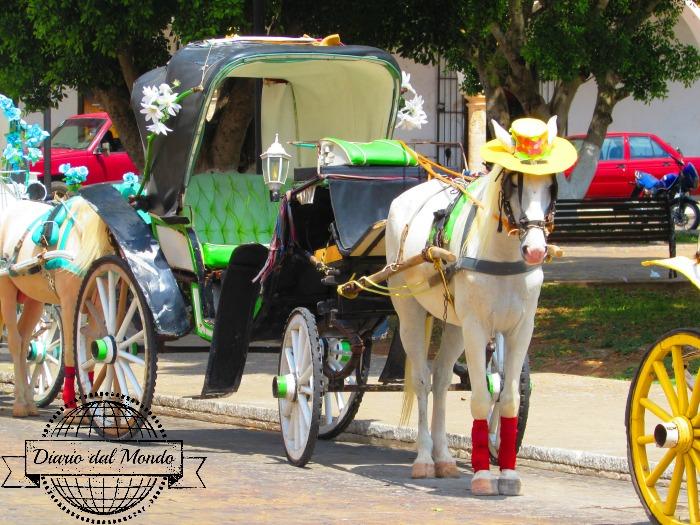 Cavalli a Izamal