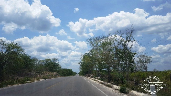 alla guida in Yucatan