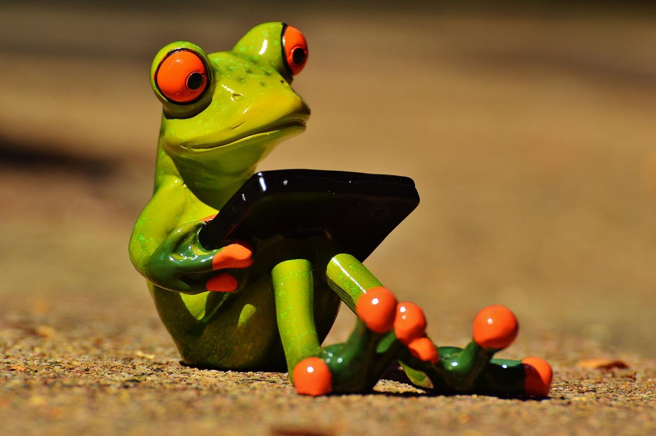 frog-881660_1280