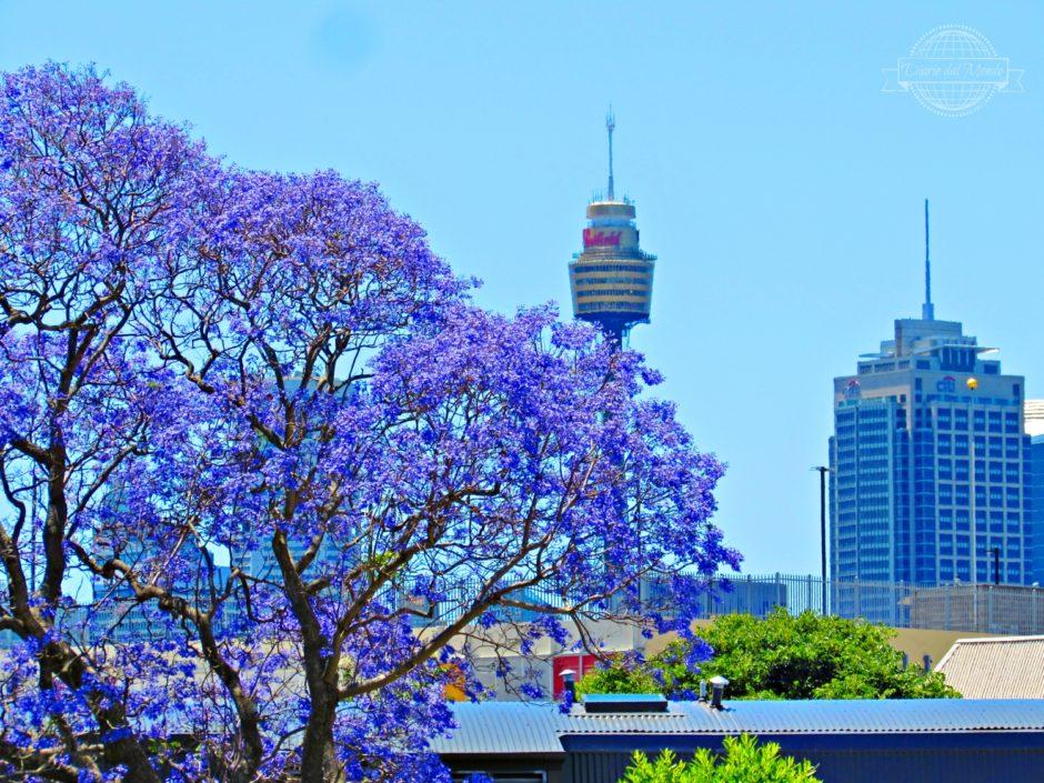 risparmiare a Sydney
